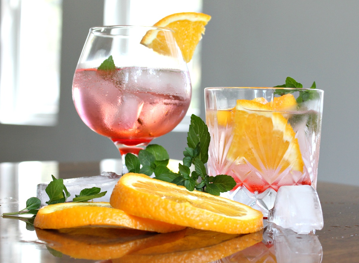 Best Gin Daisy Cocktail with Orange Slices