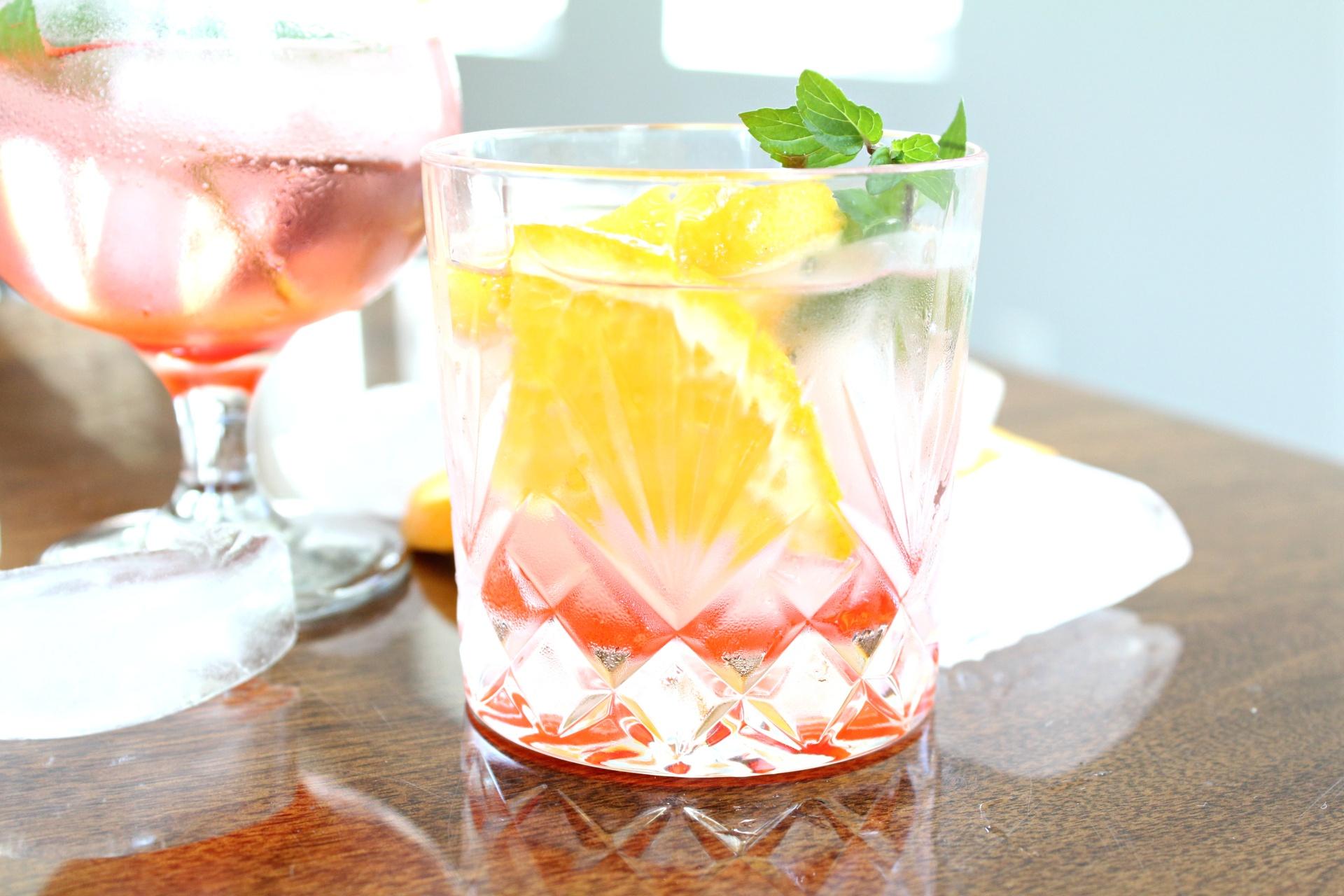 Tasty Gin Daisy Cocktail