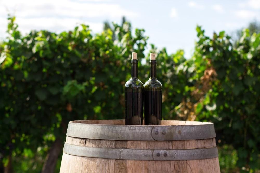 The Role Of Oak In Winemaking