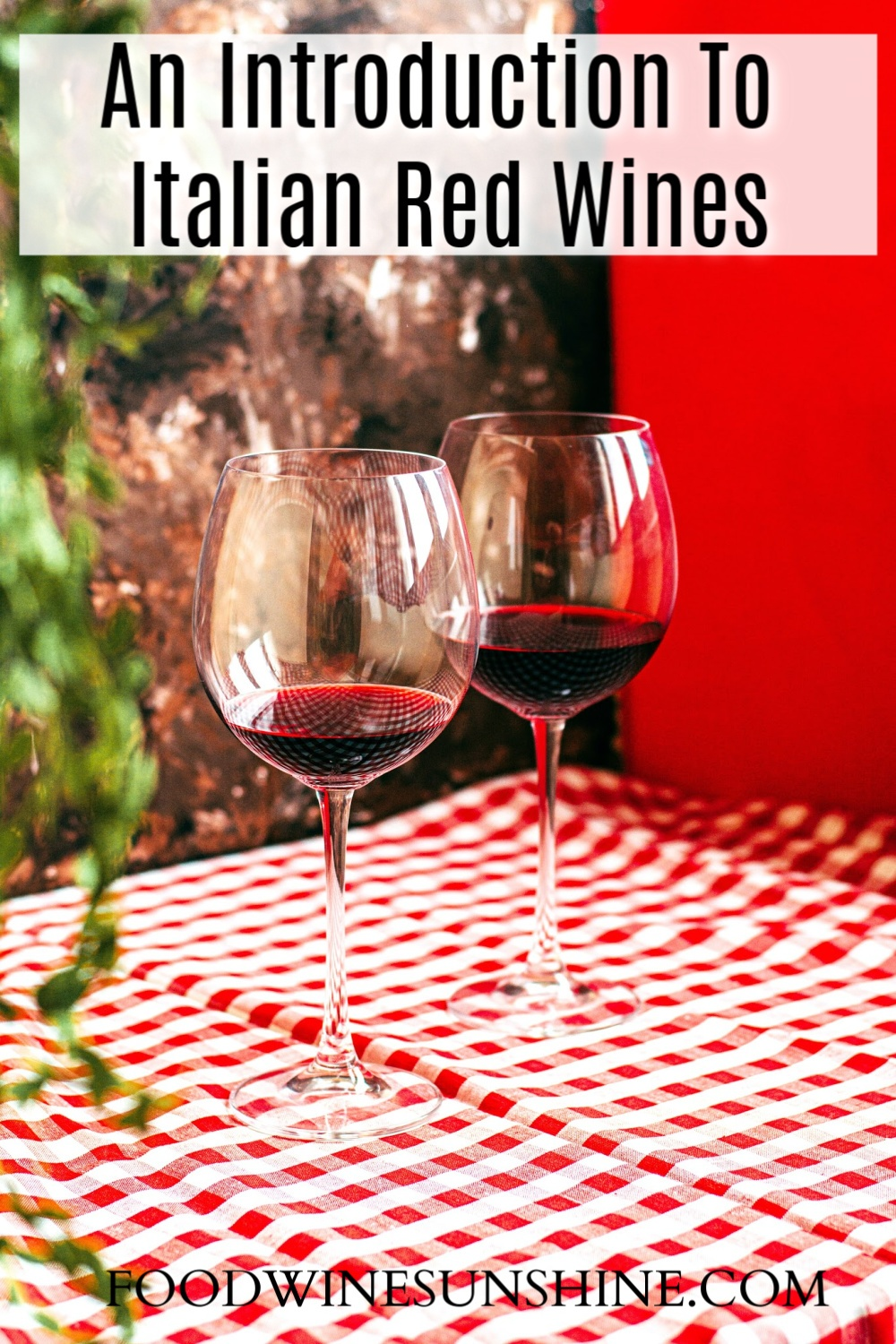 An Introduction To Italian Red Wines