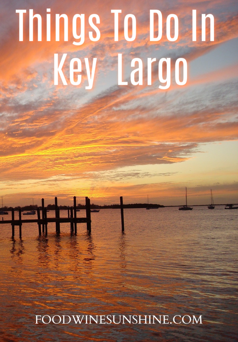 Top Things To Do In Key Largo with kids