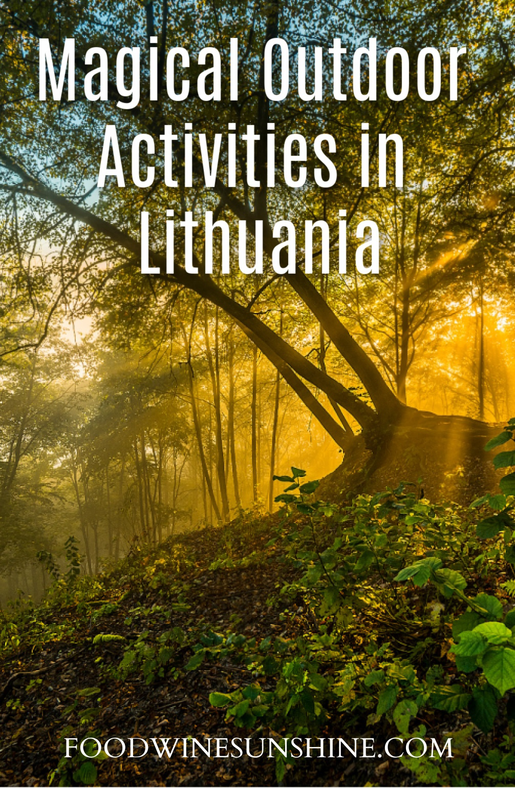 Magical Outdoor Activities in Lithuania