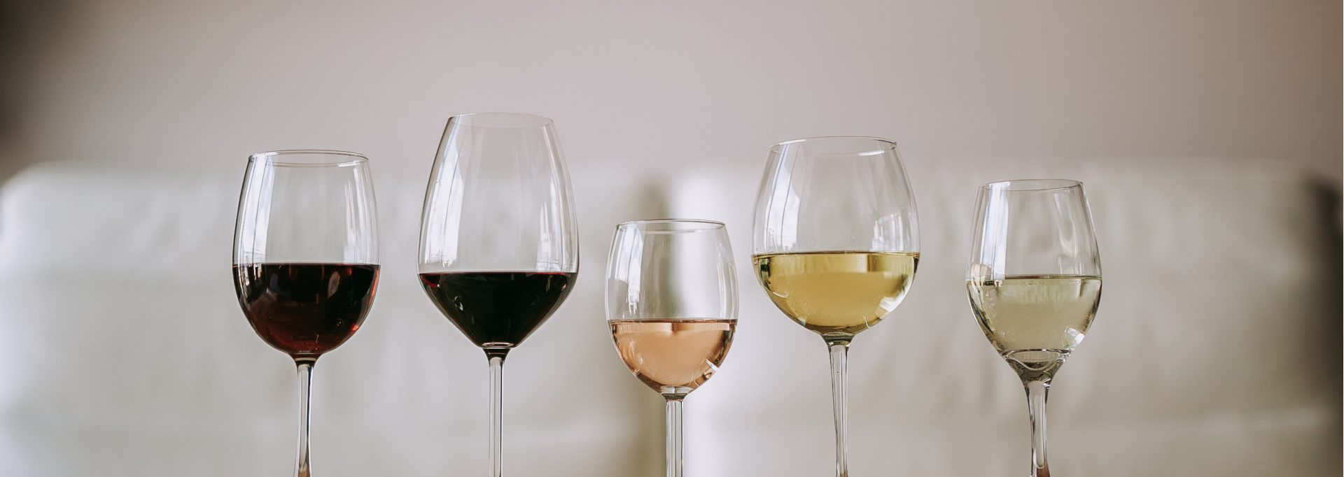 Wine Headache