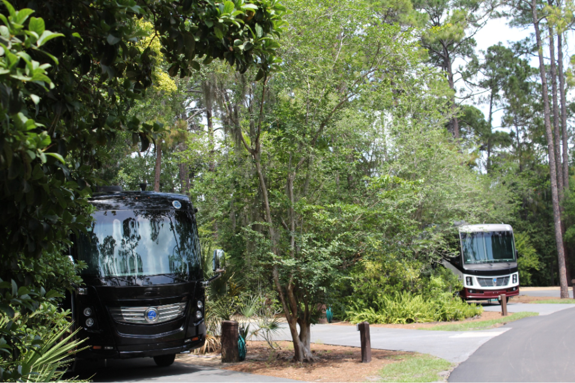 Why You Should Camp at Disney's Fort Wilderness Campground