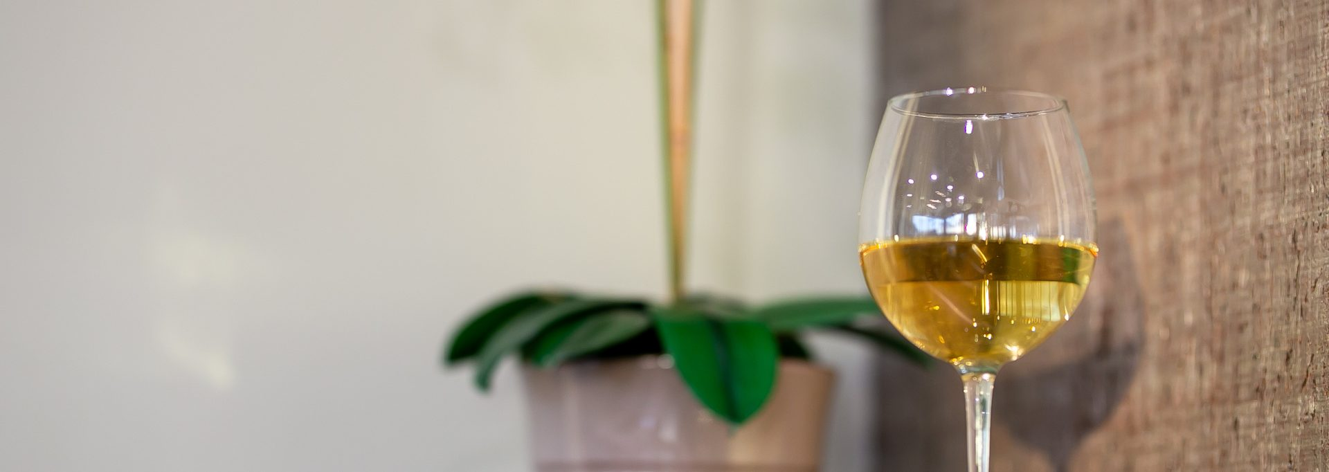 Choose White Wine Feature