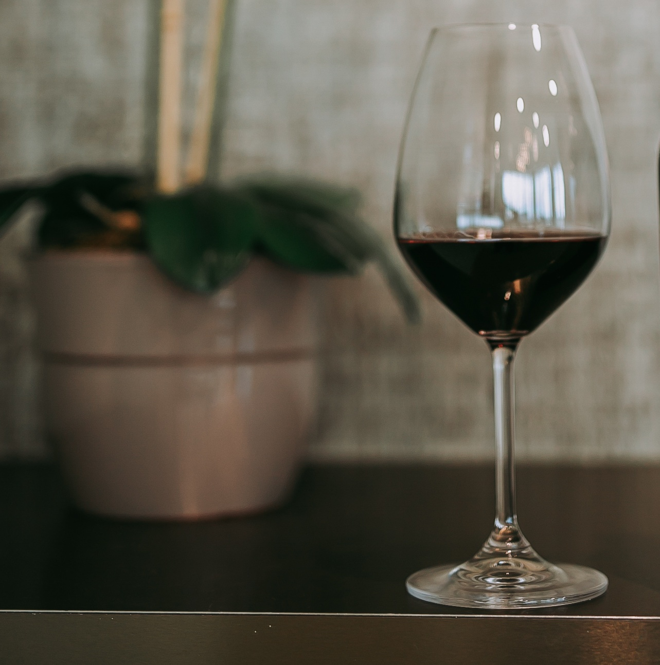 Intro To Carménère Red Wine