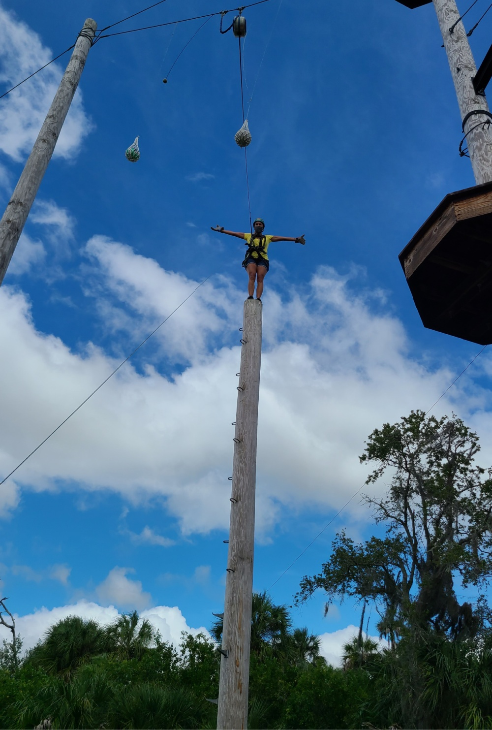 Tampa Staycation Ideas Empower Adventures Leap Of Faith