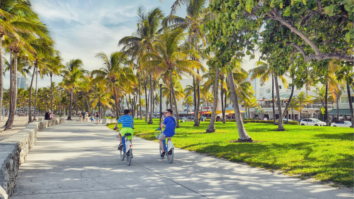 Top Free Things To Do In Miami South Beach