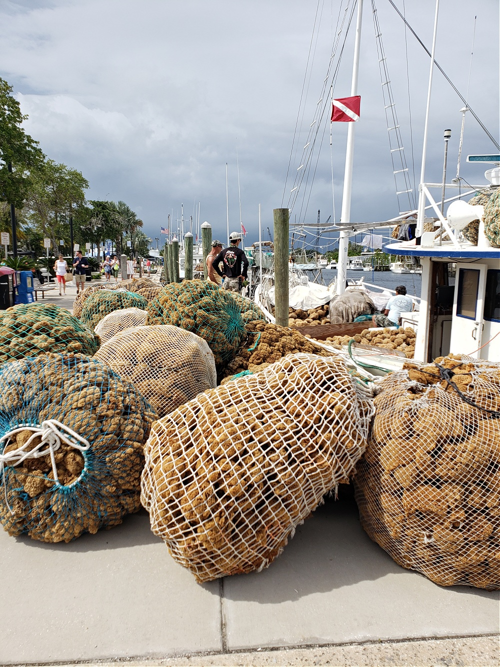 Best Things to Do in Tarpon Springs Florida