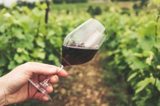 Tips For Letting Wine Breathe