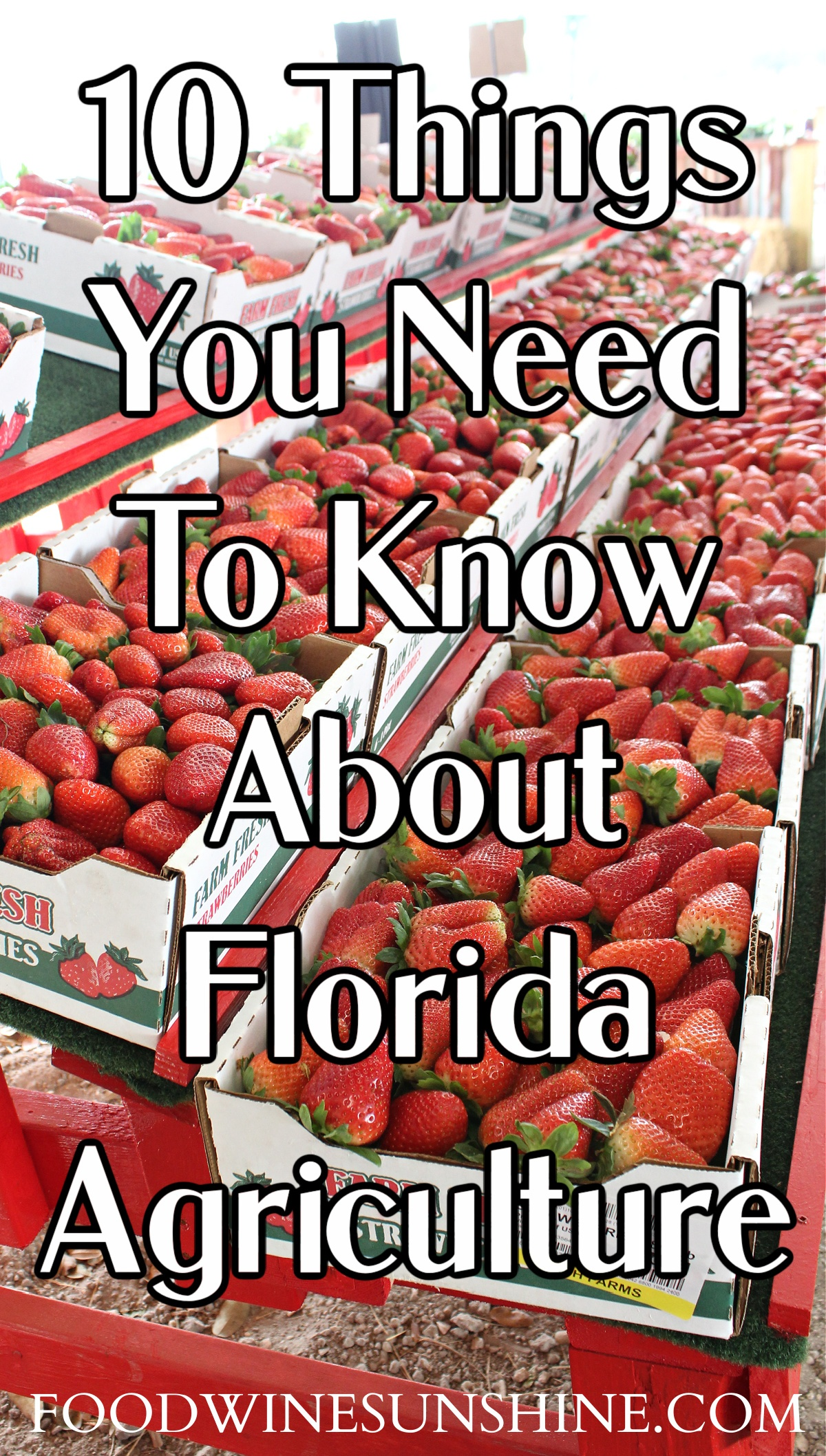 10 Things You Need To Know About Florida Agriculture