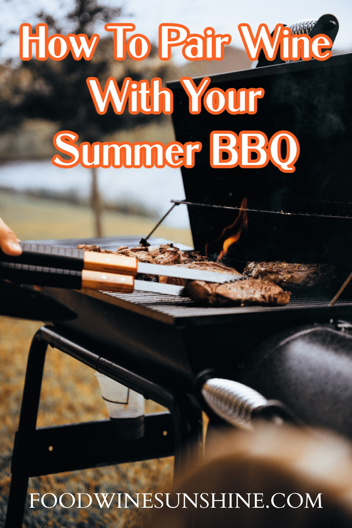 How To Pair Wine with Summer BBQ