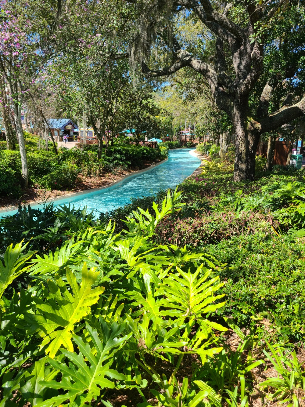 Best Things To Do At Disney's Blizzard Beach