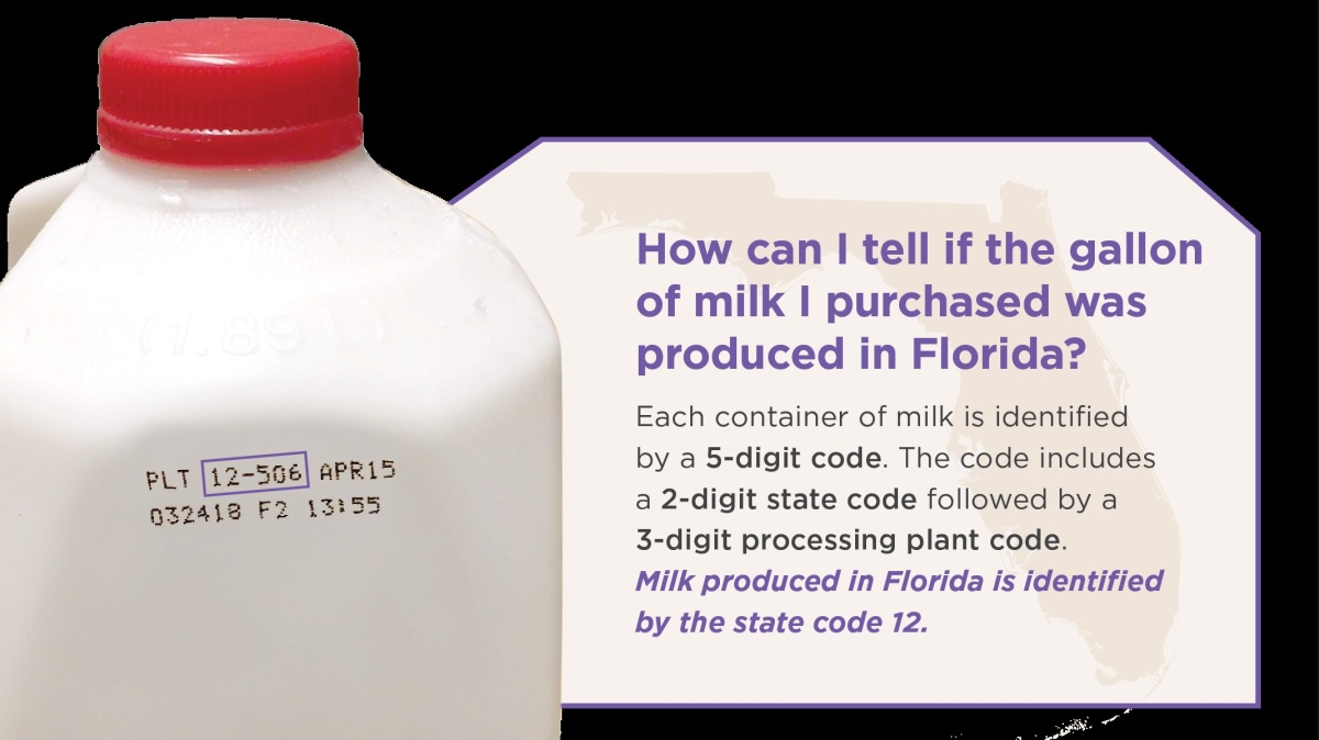 Healthy Smoothies made with Florida Milk