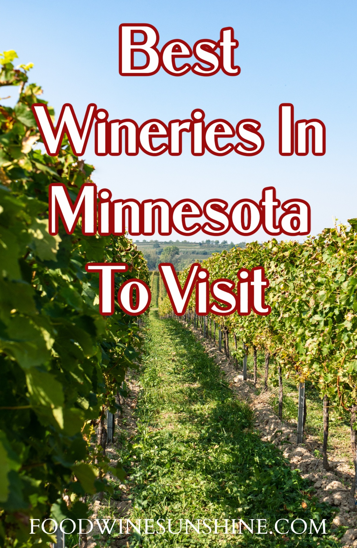 5 Of The Best Wineries In Minnesota To Visit