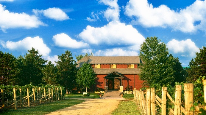 What are the best Minnesota wineries to visit