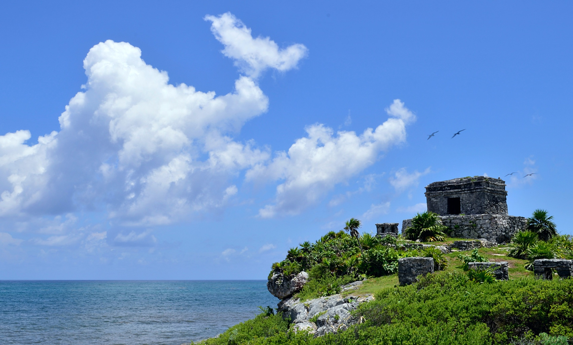 Top Day Trips From Tulum Mexico