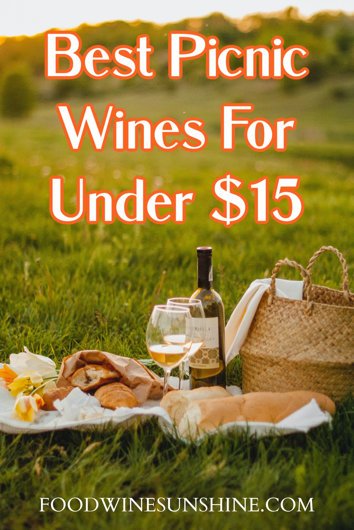 Best Picnic Wines For Under $15