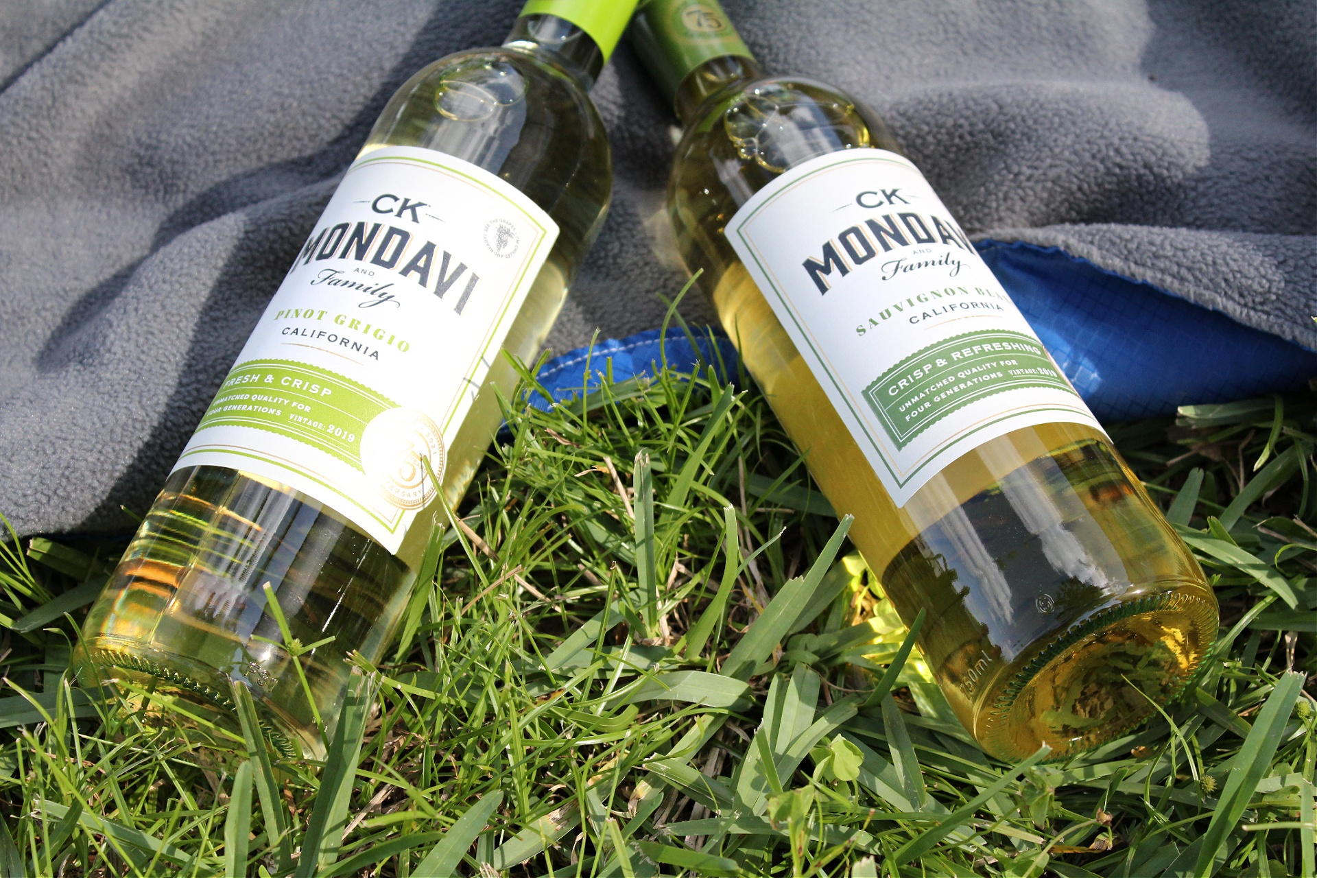 Best Picnic Red Wines