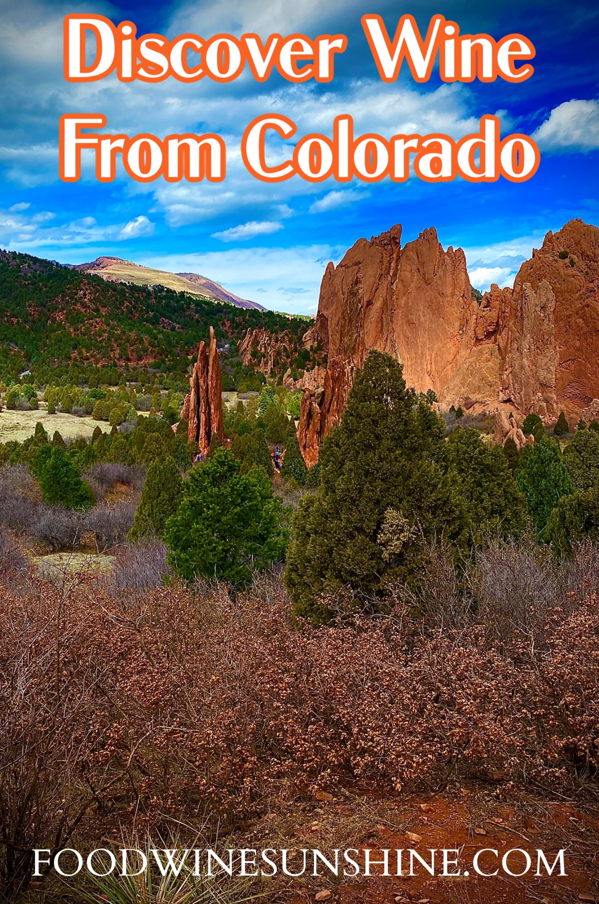 Learn about Colorado Wines