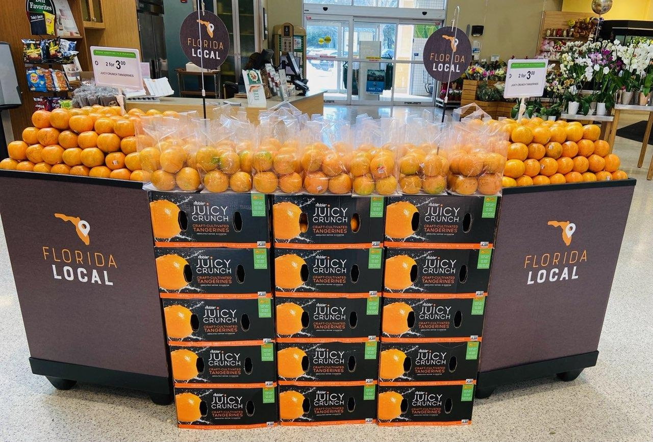 Which Tangerine Is The Best Tasting
