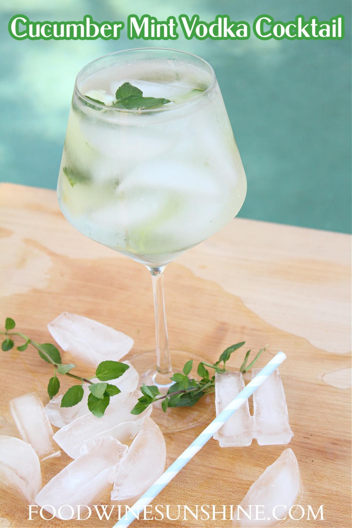 Best Cucumber Mint Vodka Cocktail